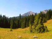 Durmitor National Park — Stock Photo