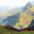 Simien — Stock Photo