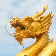 Dragon head — Stock Photo
