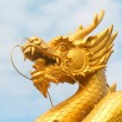 Dragon head — Stock Photo #1989084