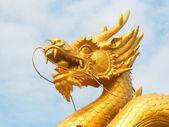 Dragon head — Stock Photo