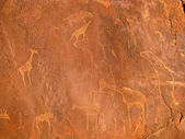 Rock paintings — Stock Photo