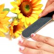 Royalty-Free Stock Photo: Manicure with flower
