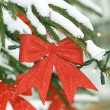 Christmas tree — Stock Photo #2060977