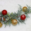 Cristmas decoration — Stock Photo #2062499