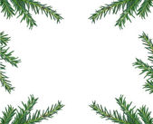 Decoration pine — Stock Photo