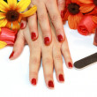 Stock Photo: Manicure