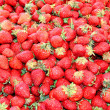Strawberry — Foto de stock #2078068