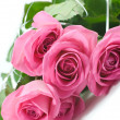 Five pink roses vertical — Stock Photo