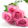 Five pink roses with blank card — Stockfoto