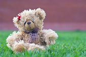 Teddy bear sitting alone — Stock Photo