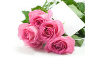 Five pink roses with blank card — Stock Photo