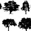 Vettoriale Stock : Tree Set