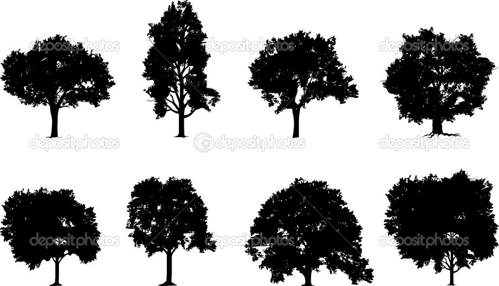 Tree Plan Vector Tree Set Vector by Slaviana