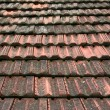 Stock Photo: Roof coated by rooftiles
