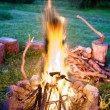 Cosy fire - Stock Photo