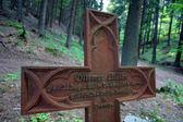 旧德国 cementary — 图库照片
