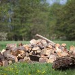 Stock Photo: Chocked wood