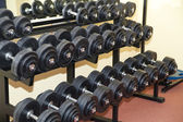 Lots of dumbbells — Stock Photo