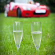 Two champaign glasses — Stock Photo #2020065