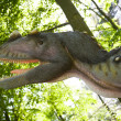 Stock Photo: Ceratosaurus nasicornis