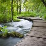 Plitvicka jezera national park — Stock Photo