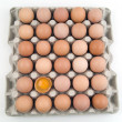Stock Photo: Plenty of eggs