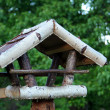 Bird table in the garden - Stock Photo