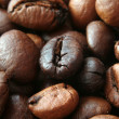 Closeup of coffe grains - Stock Photo