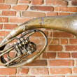 Old music instrument on the wall - Stock Photo