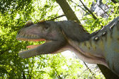 Ceratosaurus nasicornis — Stock Photo