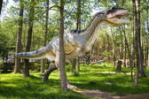 Allosaurus fragilis — Stock Photo