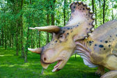 Triceratops horridus — Stock Photo