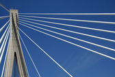 Dr. Frank Tudman's bridge — Stock Photo