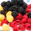 Assorted Berries — Stock Photo