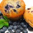 Muffin And Bagel — Stockfoto