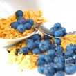Cereal And Blueberries — Stock Photo