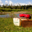 Foto Stock: Meadow Picnic