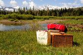 Wiese picknick — Stockfoto