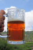 Mug Of Ale — Stock Photo