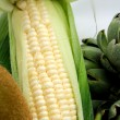 White Sweet Corn — Stock Photo #2130005
