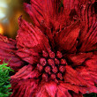 PoinsettiChristmas Tree Decoration — Stock Photo #2130092