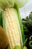 White Sweet Corn — Stock Photo