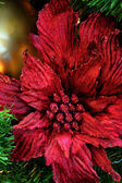 Poinsettia Christmas Tree Decoration — Stock Photo