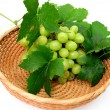Green Seedless Grapes — Stock Photo #2191713