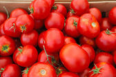 Red Heiloom Tomatoes — Stock Photo