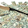 Raking In Money — Stock Photo #2225722