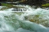 Rushing River Rapids — Stock Photo