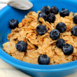 Blueberries And Cereal Closeup — Stock Photo #2616174