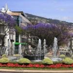 Fountain in Funchal — Stock Photo #1987502